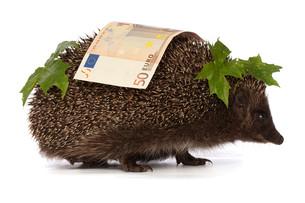 money_financesの素材 [FYI00860929]