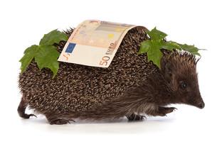 money_financesの素材 [FYI00860953]