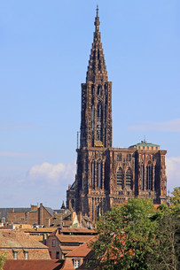 cath?drale notre-dame in strasbourgの素材 [FYI00861702]