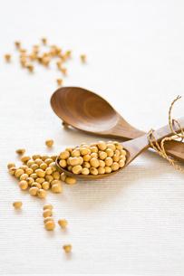 ingredients_spicesの写真素材 [FYI00862512]