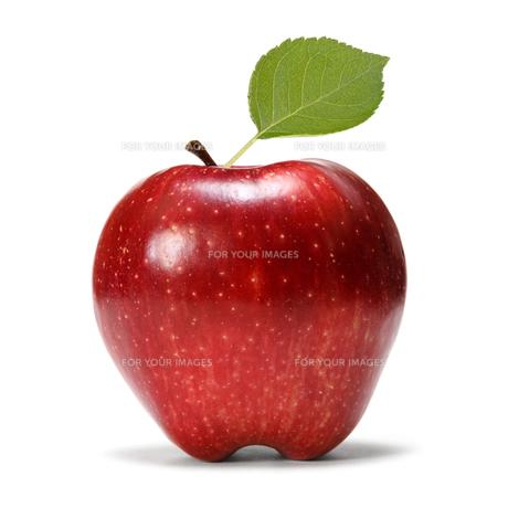 fruits_vegetablesの素材 [FYI00864269]