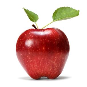 fruits_vegetablesの素材 [FYI00864299]