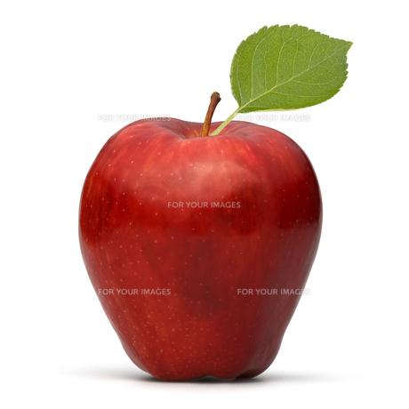 fruits_vegetablesの素材 [FYI00864414]