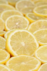 ripe lemonsの写真素材 [FYI00864959]