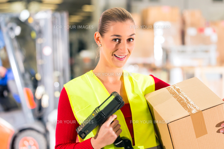 lageristin of freight forwarding keeps package in a warehouseの写真素材 [FYI00866028]