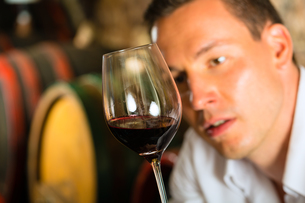 man testing wine in the background wine barrelsの写真素材 [FYI00866090]