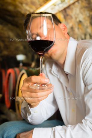 man testing wine in the background wine barrelsの写真素材 [FYI00866092]