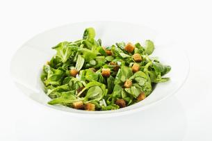 lamb's lettuceの写真素材 [FYI00866289]