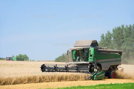 combine harvesterの写真素材 [FYI00866350]
