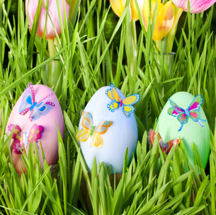 easter eggs in grassの写真素材 [FYI00866478]