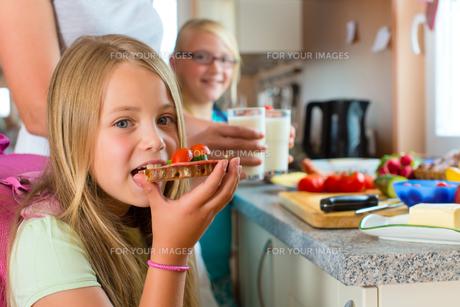 family - mother makes breakfast for schoolの写真素材 [FYI00867037]