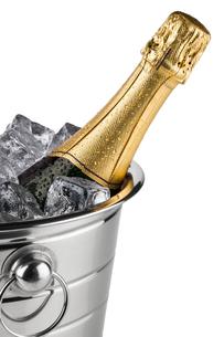 champagne coolerの素材 [FYI00867223]