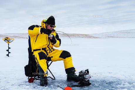 artic_antarticの写真素材 [FYI00867316]