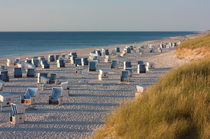 beach with beach chairs in kampen on sylt in the evening lightの写真素材 [FYI00868233]