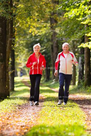 seniors jogging in forestの写真素材 [FYI00868729]