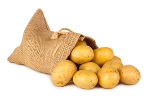 potatoe bagの素材 [FYI00869035]