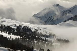 winterの写真素材 [FYI00869292]