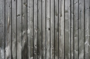 background of gray wooden slatsの写真素材 [FYI00869413]