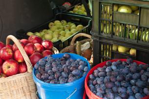 fruits_vegetablesの写真素材 [FYI00871230]