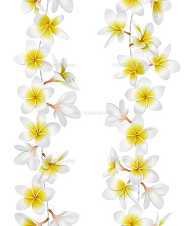 plants_flowersの素材 [FYI00871545]