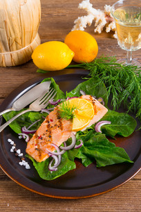 grilled salmon fillets on spinachの写真素材 [FYI00871643]