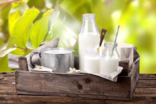 fresh milk in the gardenの写真素材 [FYI00871917]