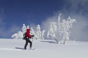 snowshoe tourの写真素材 [FYI00872491]