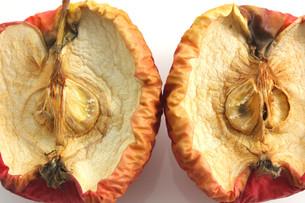 fruits_vegetablesの素材 [FYI00872954]
