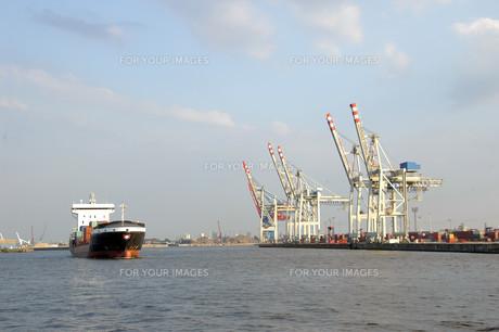the feeder ship \の写真素材 [FYI00873319]