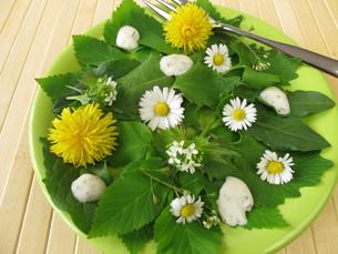 salad with wild herbsの写真素材 [FYI00874015]