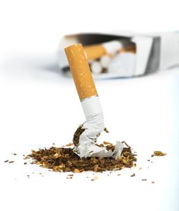 cigaretteの写真素材 [FYI00874290]