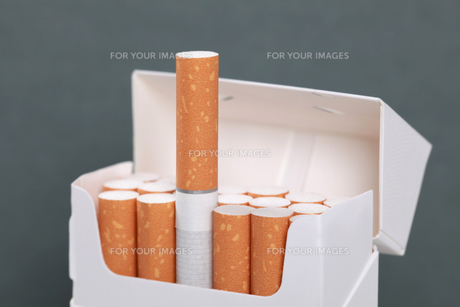 cigarettes in a pack of cigarettesの写真素材 [FYI00874293]