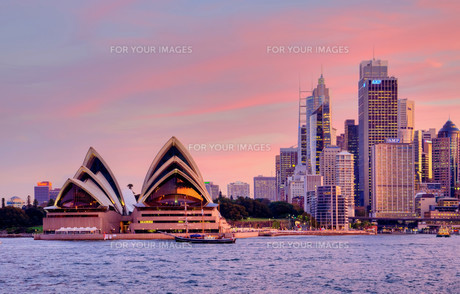 sydney pink sunset 2の写真素材 [FYI00874471]