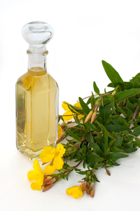 evening primrose oil with flowersの写真素材 [FYI00874542]