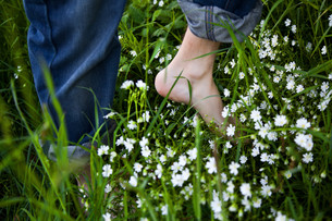 bare feet on green grass and flowersの写真素材 [FYI00875651]