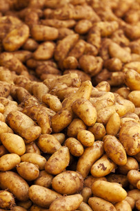 background from raw potatoesの写真素材 [FYI00875687]