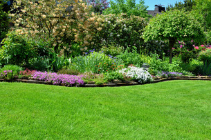 lawn with garden backgroundの写真素材 [FYI00875828]