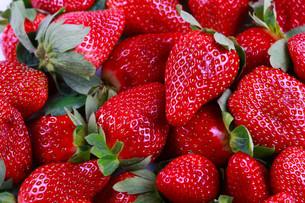 fruits_vegetablesの写真素材 [FYI00875990]