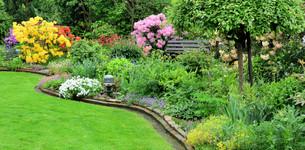 garden in springの素材 [FYI00876326]