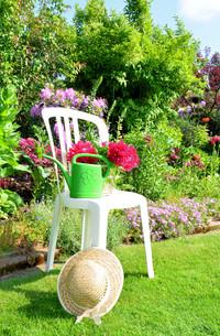 gardenの写真素材 [FYI00876337]