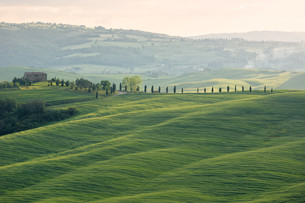 landscapesの写真素材 [FYI00876533]