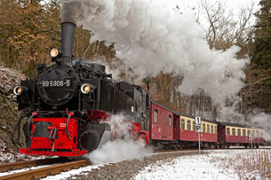 miniature railway selketalbahnの素材 [FYI00876719]
