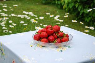 fruits_vegetablesの写真素材 [FYI00877655]
