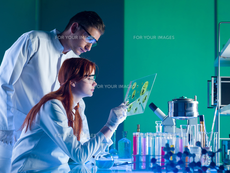 science_researchの写真素材 [FYI00878152]
