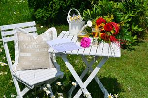recreation in the garden in summerの写真素材 [FYI00878224]