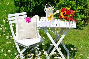 recreation in the garden in summerの写真素材 [FYI00878244]