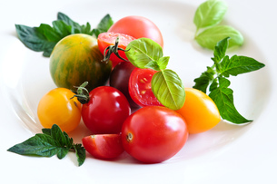 colorful tomatoes tastyの写真素材 [FYI00878355]