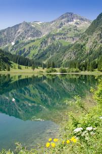 mirroring berg am vilsalpsee in the tannheim valley in austriaの写真素材 [FYI00879947]