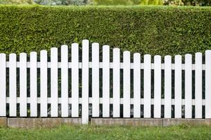 picket fenceの写真素材 [FYI00880026]