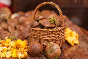 basket with mushroomsの写真素材 [FYI00882736]